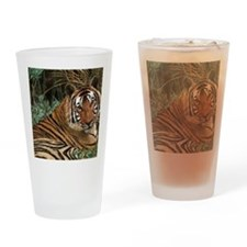 Tiger laying Drinking Glass