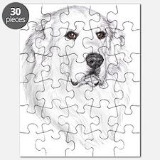 Gus Puzzle