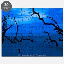 Folly Blue Puzzle
