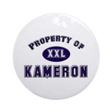 Property of kameron Ornament (Round)