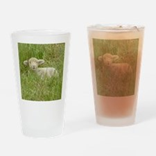 LambSquare Drinking Glass