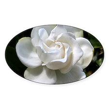 gardenia 16x20 Decal