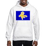 Brussels Flag Hooded Sweatshirt