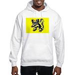 Flanders Flag Hooded Sweatshirt