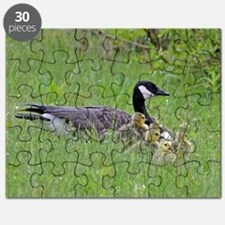 Goslings with mom Puzzle