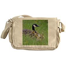 Goslings With Mom Messenger Bag