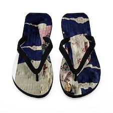 ChangE2Poster Flip Flops