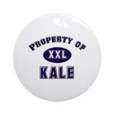 Property of kale Ornament (Round)