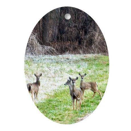 DeerInFrost_iPhone4Slider Oval Ornament