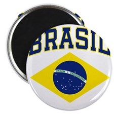 brazilcolor Magnet