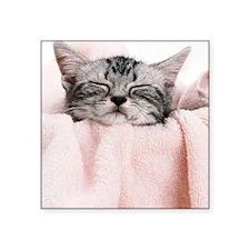 "kitty basket slider Square Sticker 3"" x 3"""