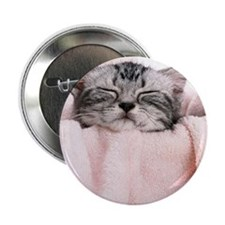 """kitty basket slider 2.25"""" Button"""