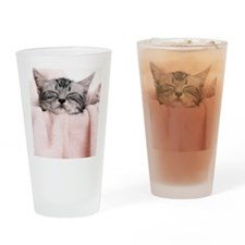 kitty basket slider Drinking Glass