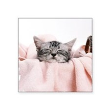 "kitty basket shirt Square Sticker 3"" x 3"""