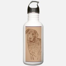 Chesapeake_Bay_Retriev Sports Water Bottle