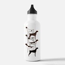 IPadSixShorthairs001 Water Bottle