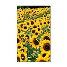 Sunflowers_iphone Rectangle Car Magnet