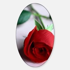 Red_Rose Sticker (Oval)