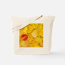 Aspen_leaves Tote Bag