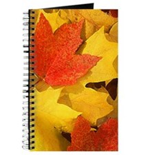 Autumn_leaves_iPhone Journal