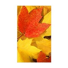 Autumn_leaves_iPhone4 Decal
