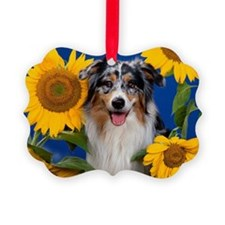 AUS Shep greeting Picture Ornament