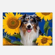 AUS Shep greeting Postcards (Package of 8)