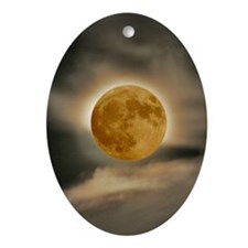 framed panel moon Oval Ornament