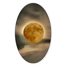 framed panel moon Decal