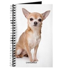 chihuahua311 Journal