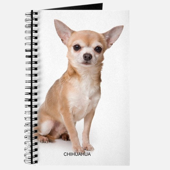 chihuahua311 Journal