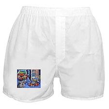 Schnauzer Busy House Boxer Shorts