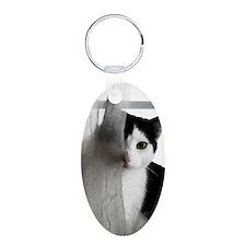 clifford Aluminum Oval Keychain