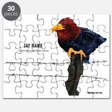 Jay_Hawk_None Puzzle