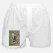 Woodcock Boxer Shorts