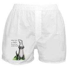 Ferritude Boxer Shorts