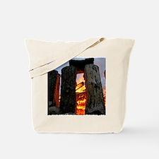 IMG_4056 24x18 coT Tote Bag
