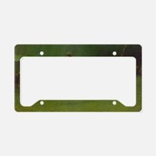 The Stampede License Plate Holder