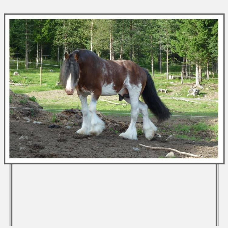 coverCLYDESDALE Yard Sign
