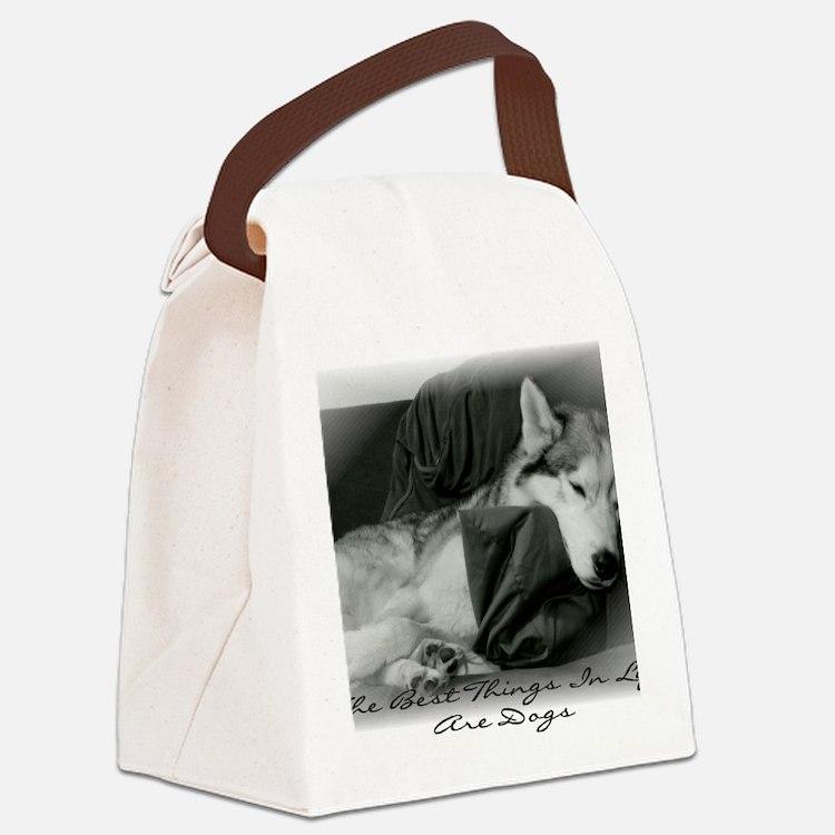 BestThings Canvas Lunch Bag