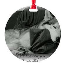 BestThings Ornament