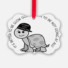 10x8slow_going_turtle Ornament