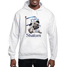 Shalom Pug with Israeli Flag Hoodie
