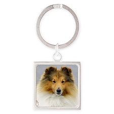 Shetland Sheepdog 9M053D-18 Square Keychain