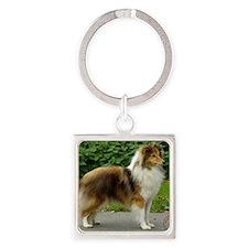 Shetland Sheepdog 9T002D-090 Square Keychain