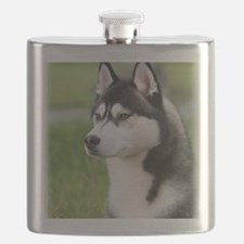 Siberian Husky 9Y570D-006 Flask