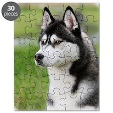 Siberian Husky 9Y570D-006 Puzzle