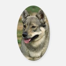 Swedish Vallhund 9J100D-11 Oval Car Magnet