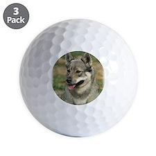 Swedish Vallhund 9J100D-11 Golf Ball