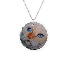 Aniksi ViaAppia Ifonas Cat Necklace